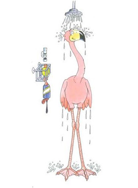Image of frankie the flamingo