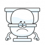 Leaky Loos - a cool alliterative title for a serious problem