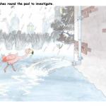 Frankie the flamingo investigates