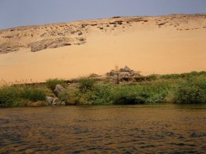 nile and sand dune