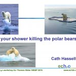 Is your shower killing the polar bears? (KS3,4)
