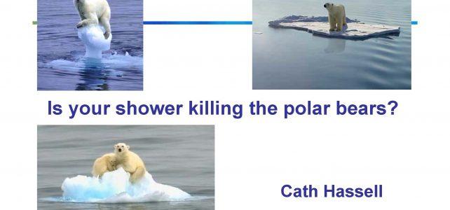 Is your shower killing the polar bears? (KS3,4)